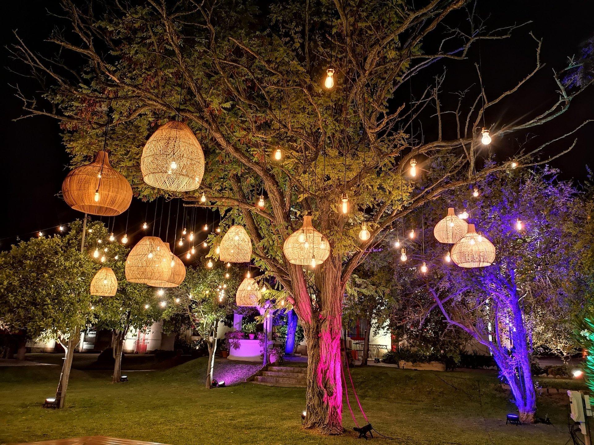 arbol con lamparas y bombillas
